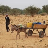 les-villageois-amenent-les-materiaux-de-base